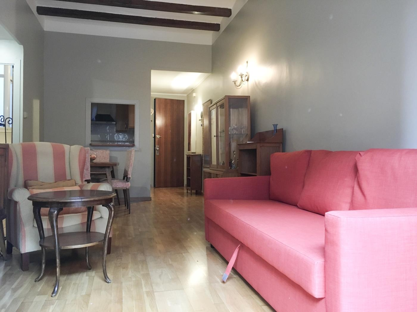 Vintage apartment with balcony in the city centre near Arc de Triomf for 5 - My Space Barcelona Apartments